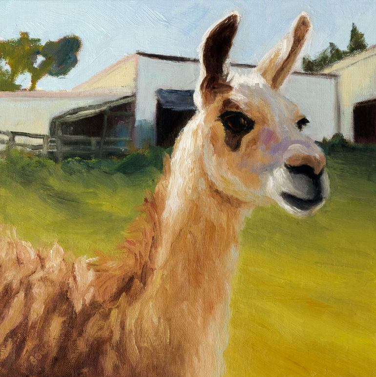 Backyard Lama, oil on panel, 8x8""