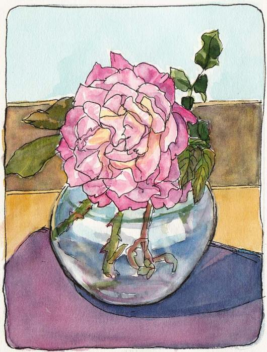 Second to Last Rose Test, ink & watercolor