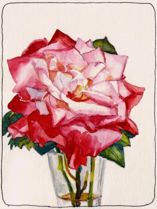 Will You Accept This Rose? Yes, Finally. Watercolor, 7x5""