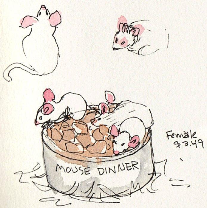 Female Mice, $3.49