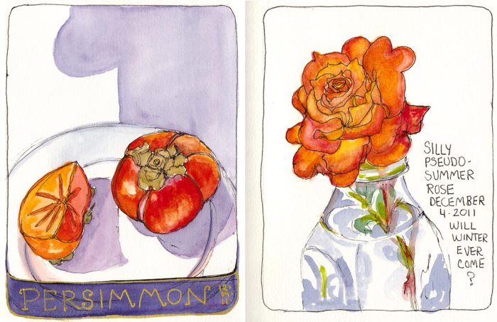 Persimmon-Rose Sketchbook spread, ink & watercolor