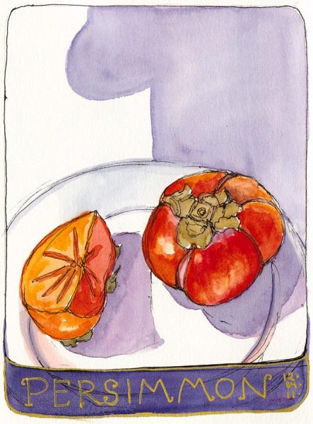 Number One Persimmon, ink & watercolor, 7x5""