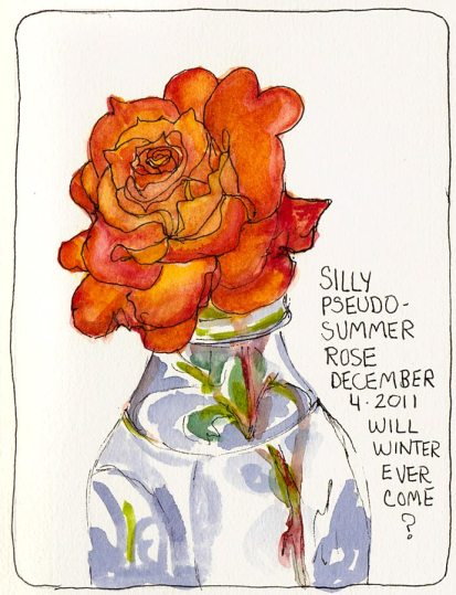 Silly Pseudo Summer Rose, ink & watercolor, 7x5""