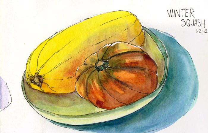 """Spaghetti Squash and Acorn Squash, ink & watercolor, 8x5"""""""
