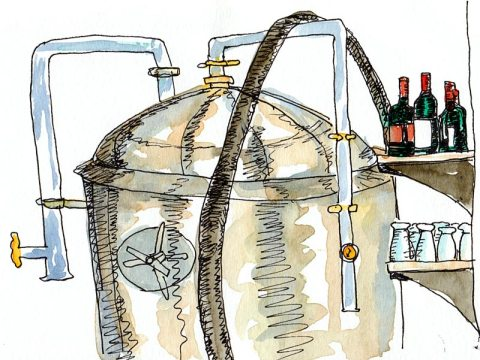 Beer in the vat, wine on the shelf with hoses