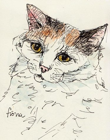 Fiona, ink & watercolor, 6x4""
