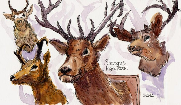 """The High Room Taxidermy at Spengers, ink & watercolor, 5x7.5"""""""