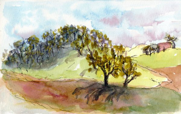 Borges Ranch Shell Ridge Area, ink & watercolor, 5x8""