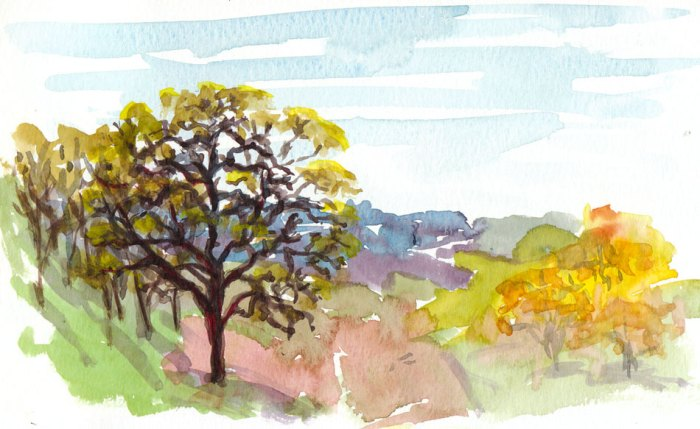 Borges Ranch Shell Ridge Open Space, watercolor, 5x8""