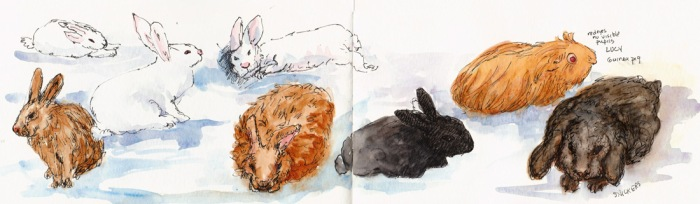 Full spread in sketchbook