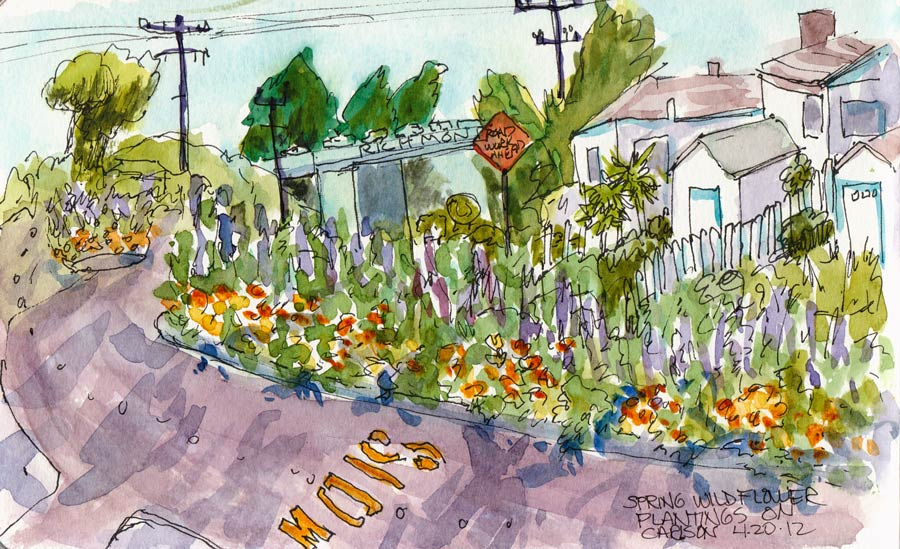 "Wildflowers on Carlson Boulevard, ink & watercolor 5x8"""
