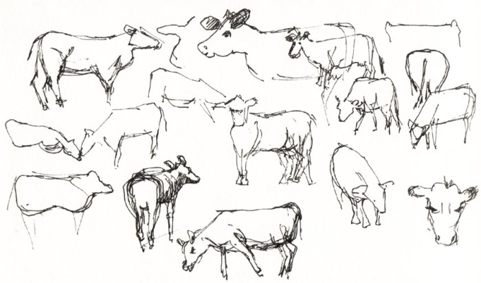 Bull Valley Cow Scribbles, ink 5x8""