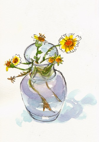 Little Daisy-Like Wildflowers, ink & watercolor, 8x5""