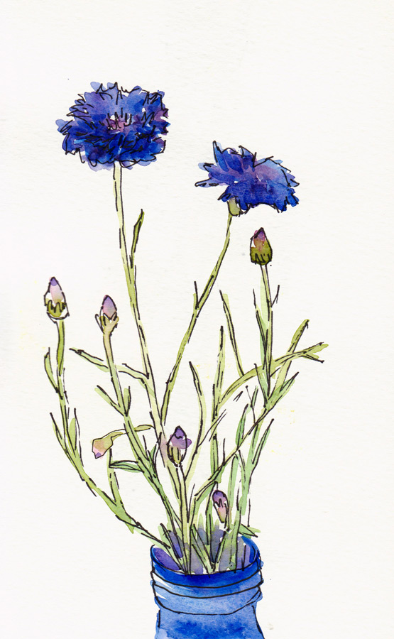 Cars Gone Wild >> Gone Wild With Wildflowers, Part 1 | Jana Bouc, Artist