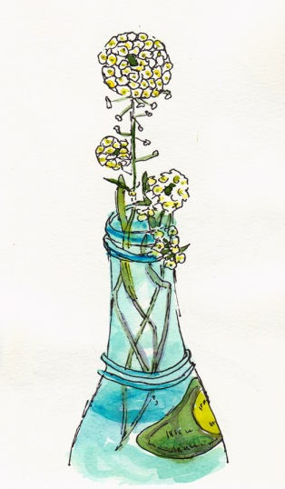 Lacy Wildflowers in Blue Bottle, ink & watercolor, 8x5""