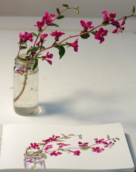Pink Wildflower sketch with photo