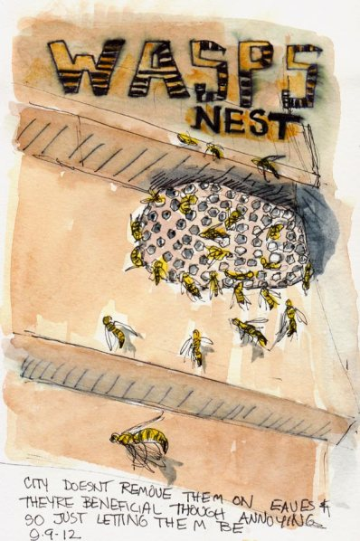 Wasps Nest Under the Eaves, ink & watercolor, 8x5""