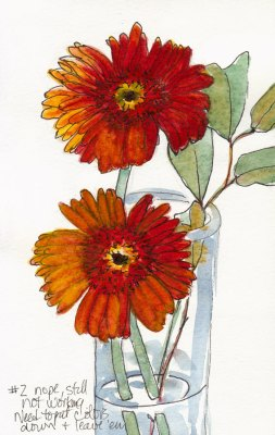Gerbera Daisy, Attempt #2, ink & watercolor