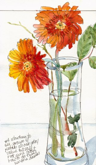 Gerbera Daisy, Attempt #4, ink & watercolor 9x5""