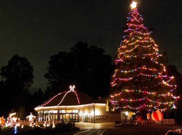 Photo of Tilden Christmas Fantasy