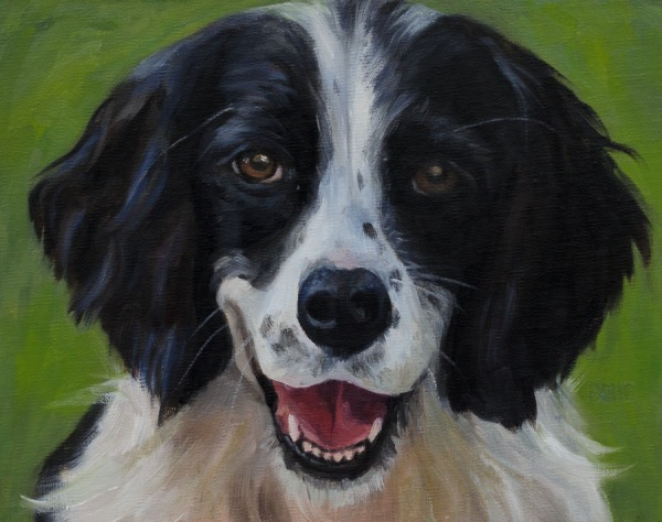 Puck, a dog portrait in oil on linen panel, 8x10""