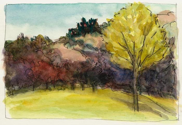 "Miller-Knox Park Autumn, ink & watercolor, 5x8"""