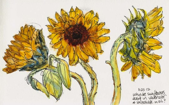 Sunflower #3, ink & watercolor, 5x8""