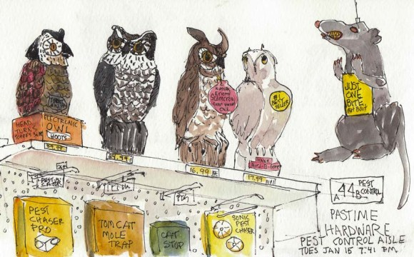"Pest Control at Pastime Hardware, ink & watercolor, 5x8"". Sketch of artificial owls and other pest control devices"