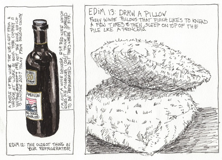 Every Day in May #12: Oldest in Refrigerator; #13: Pillow. Ink & Colored Pencil, 8x10""