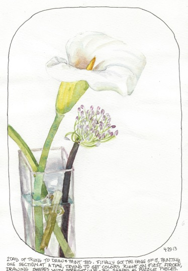 "Lily sketch #6, watercolor, 8x10"""