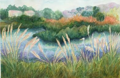 Marsh, Foggy Day
