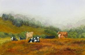 Hillside Cows
