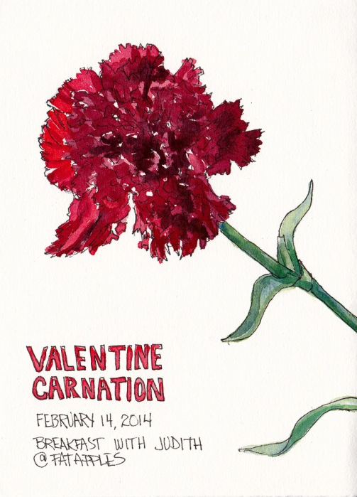 Valentine Carnation, ink and watercolor sketch, 7.5 x 5.5 in