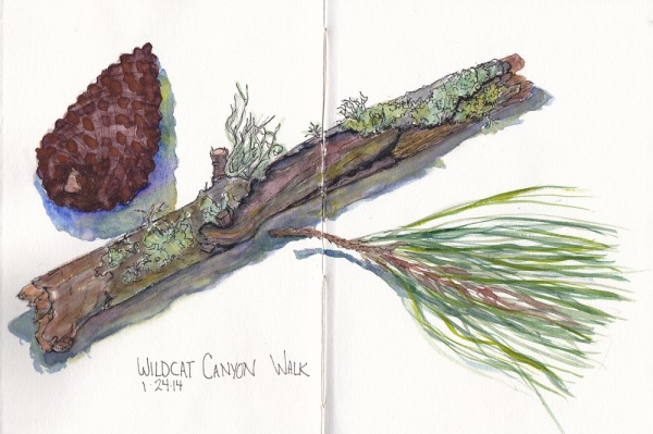 Wildcat Canyon Walk Remains, ink and watercolor sketch, 7.5 x 11 in