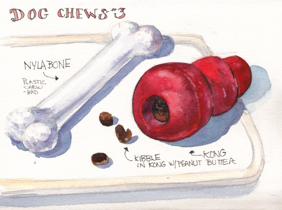 Dog Chews 3, ink and watercolor, 5x7 in