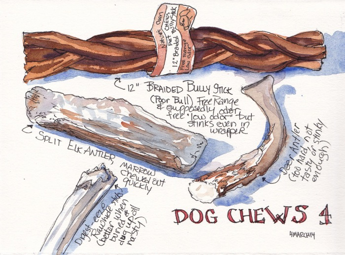 Dog Chews 4, ink and watercolor, 5x7 in