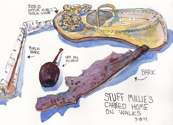 Stuff Millie Carried Home From Walks, ink and watercolor 5x7.5 in