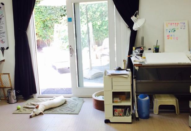 Studio Pup Millie