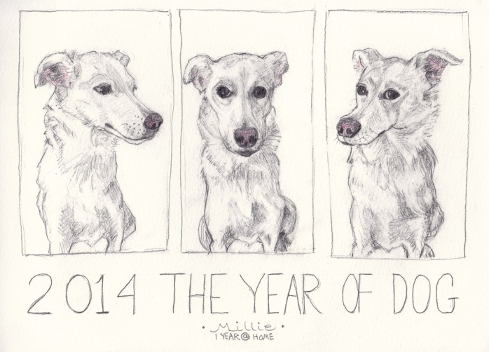 Millie: 2014 The Year of the Dog Detour, graphite in jumbo Moleskine WC Notebook, 8x11.5 inches