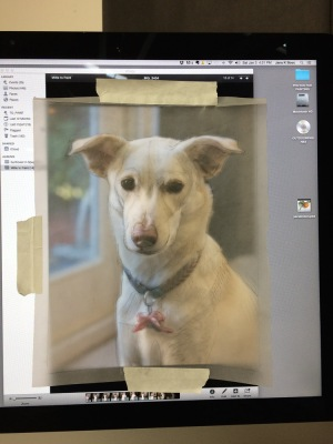 Tracing paper taped to iMac to compare and correct from photo