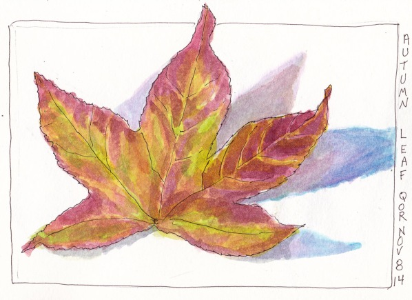 Leaf Sketch with QOR watercolors, ink and watercolor, 5x7 in