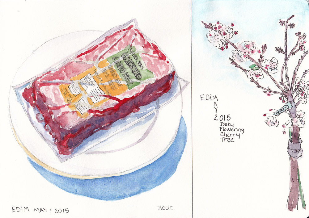 EDiM 1 and 2: Food (Defrosting Ground Beef) and Tree (Baby Flowering Cherry)