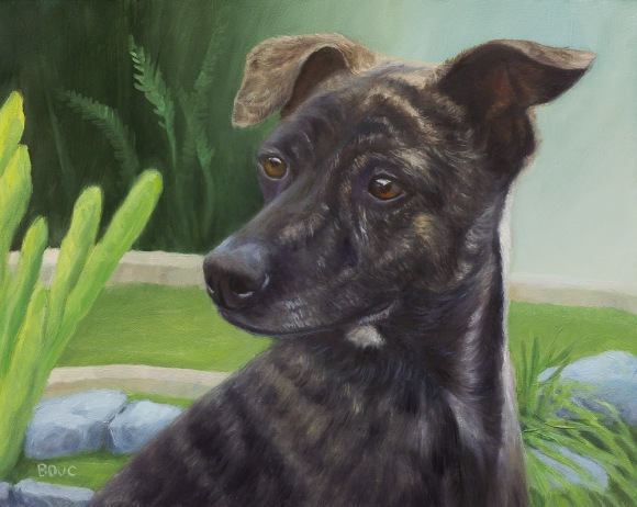 Portrait of Leo, Formosan Mountain Dog, oil on panel, 8x10 in