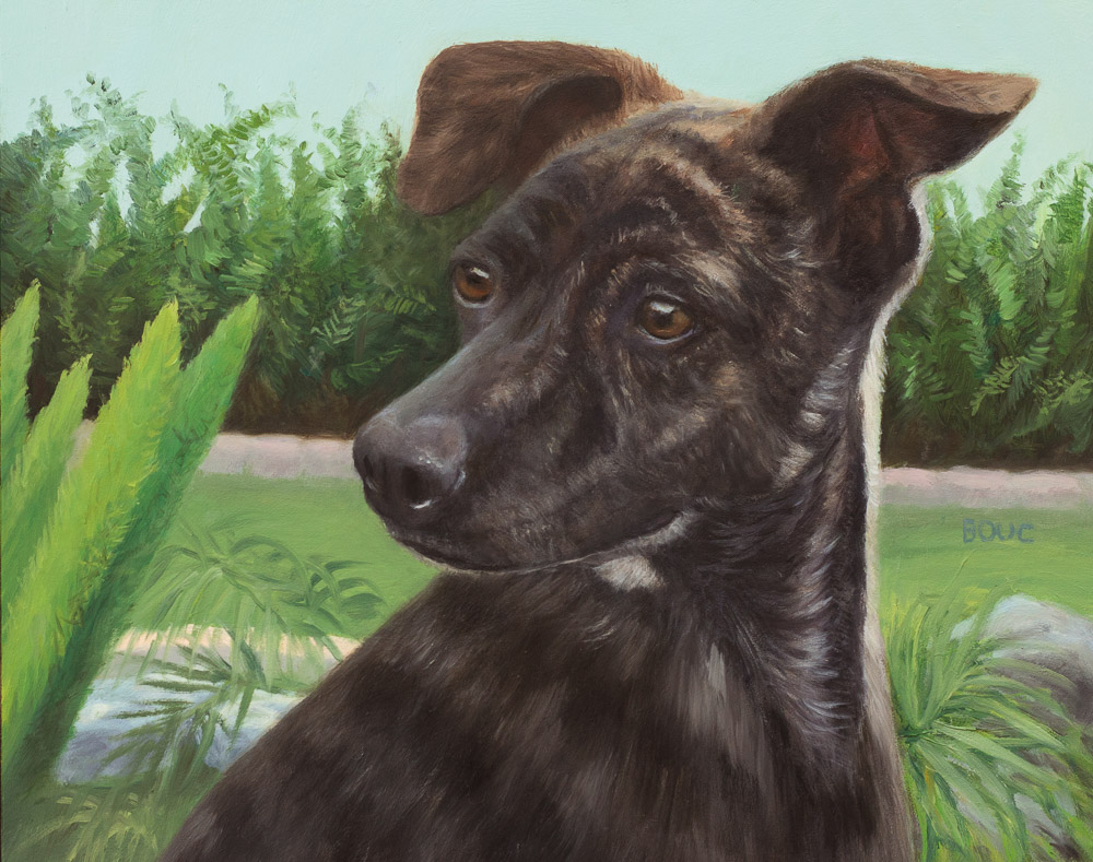 Leo, Dog Portrait, Take Two, oil on panel, 8x10