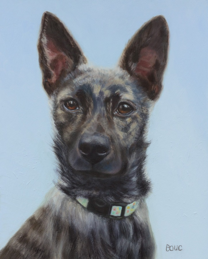 Mika, a Formosan Mountain Dog portrait in oil paint on linen panel,, 10x8 in