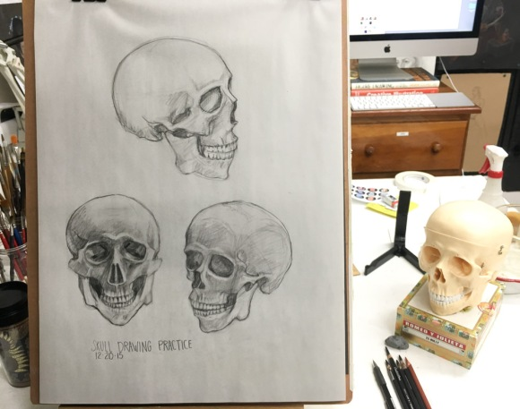 Skull drawing practice #1, Conte pencil on paper, 24x18 inches