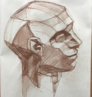 Planes of the head drawing practice