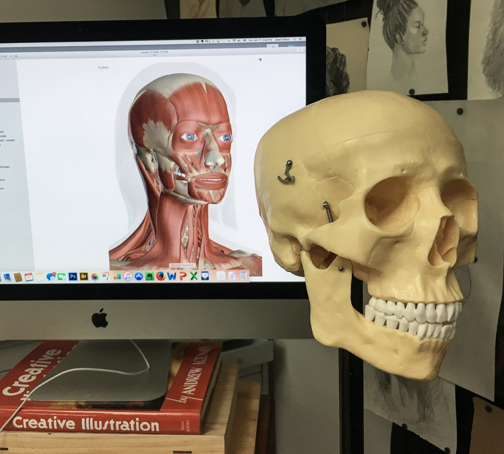 Innerbody.com on the screen, and my skull Mortie Skullman