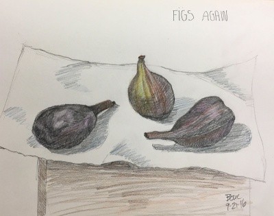 Figs on a Paper Towel on a Box, 2B Pencil in 8x10 Moleskine