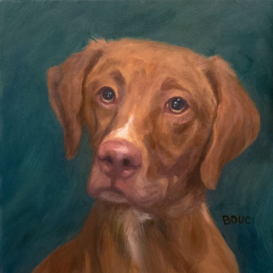 Dog Portrait of Dillon, oil on Gessobord panel, 8x8""